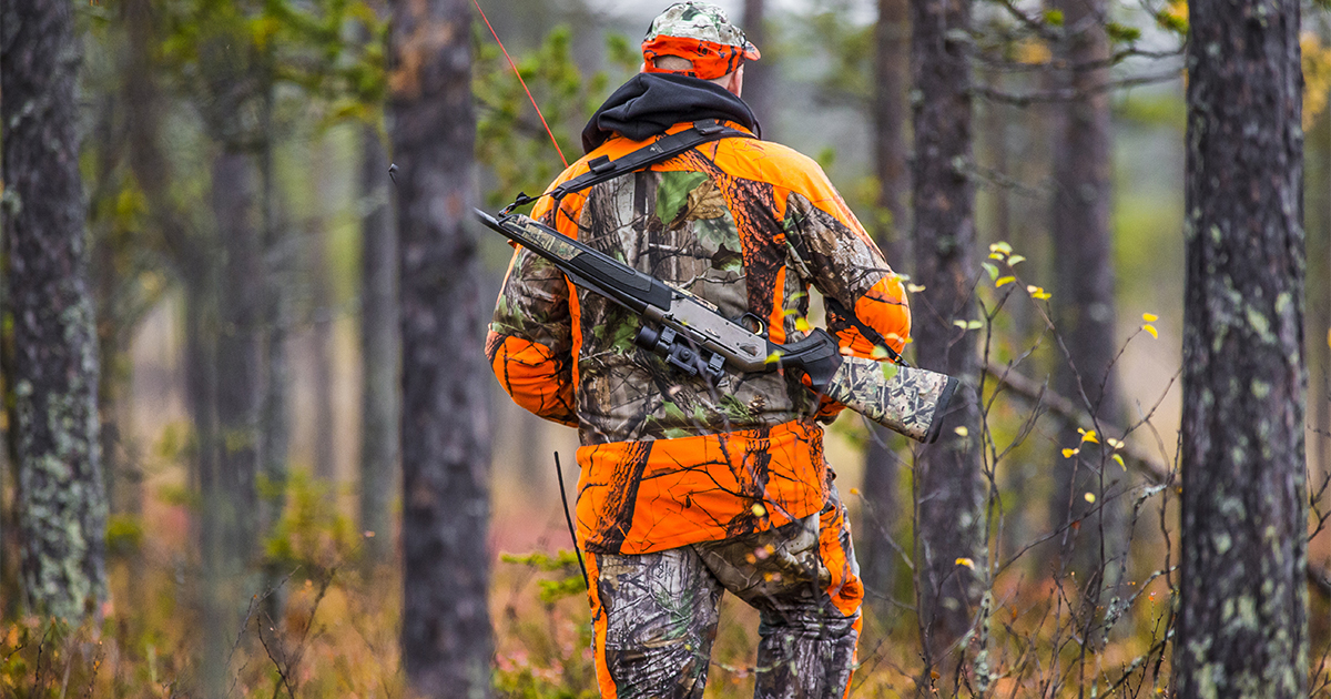 Brewster: Sunday Hunting Bill Approved by Senate Committee, Moves to Full Senate
